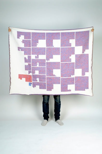 Blanket showing the genomic information of a million genetic markers for a member of the family in all chromosomes
