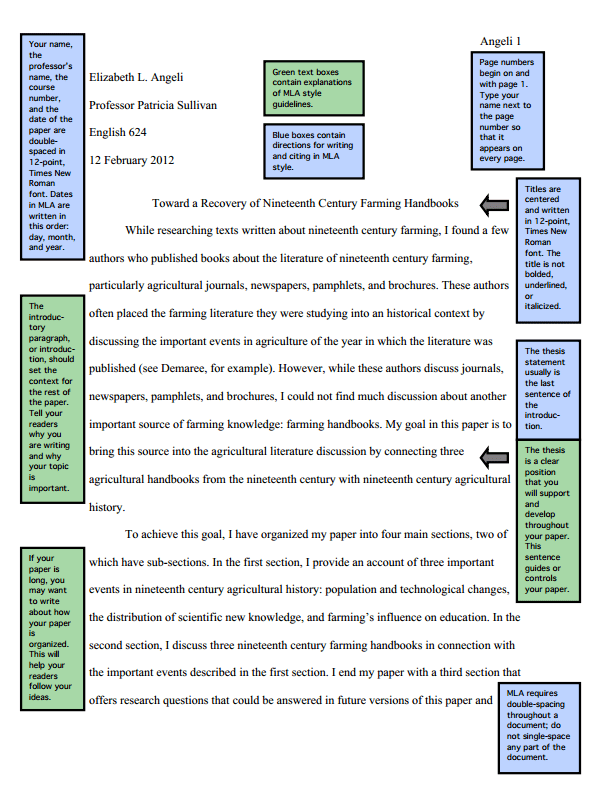 Mla Format English Paper Example Hizli Rapidlaunch Co