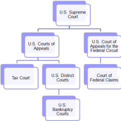 U S Government Structure Diagram 1998 Nissan Patrol Stereo Wiring Court Jurisdiction Of Tax Issues And Appellate - Law Research : Federal Ohio ...