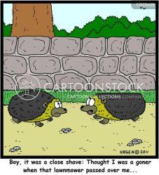 close wildlife shaves cartoon garden funny cartoons cartoonstock hedgehogs dislike animal comics illustrations