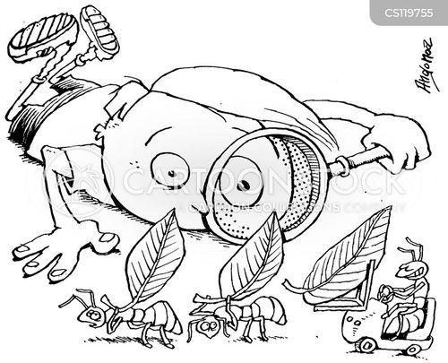 Working Ants Cartoon
