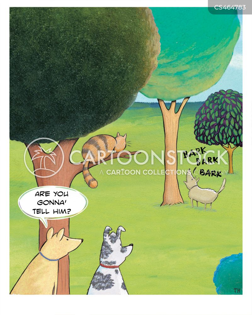 Barking Up The Wrong Tree : barking, wrong, Barking, Wrong, Cartoons, Comics, Funny, Pictures, CartoonStock
