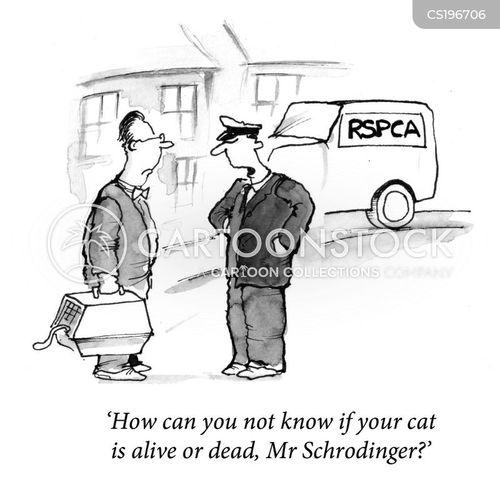 schrodinger s cat cartoons