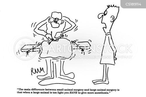 Cartoons und Karikaturen mit Chefarzt