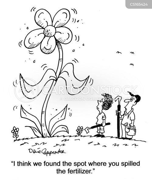 Cartoons und Karikaturen mit Gärtner