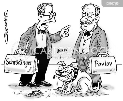 schrodinger cartoons and comics