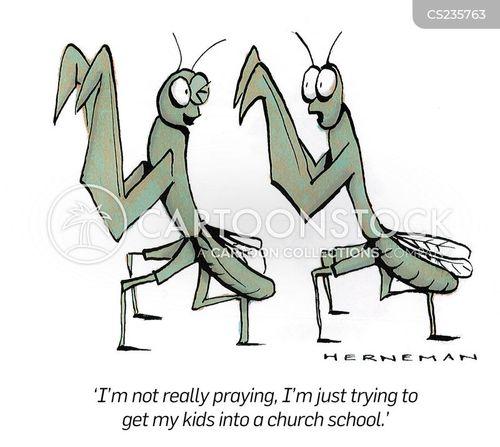 preying mantis cartoons and comics