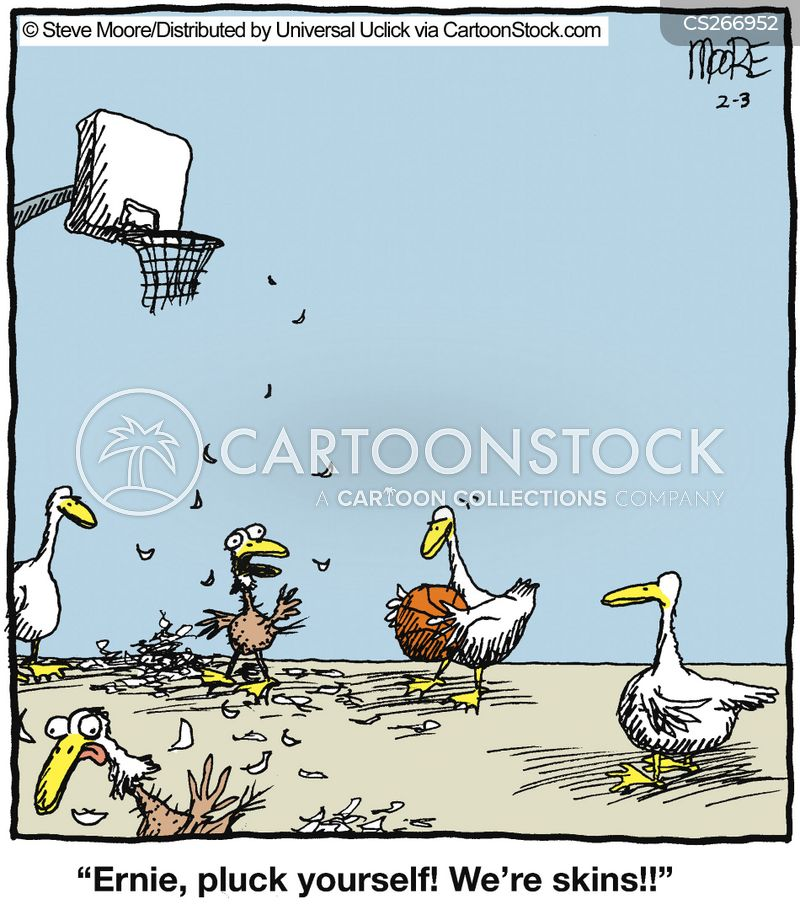 Plucked Cartoons and Comics  funny pictures from CartoonStock