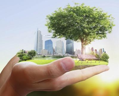 a person holding a park with buildings and trees
