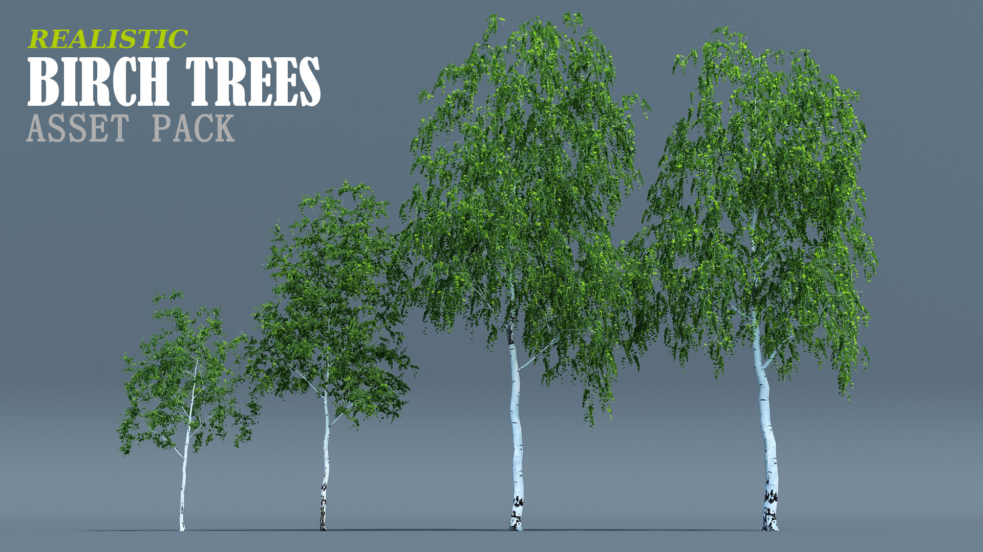 birch trees pack