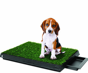 Pet-park-deluxe-dog-relief-system-m