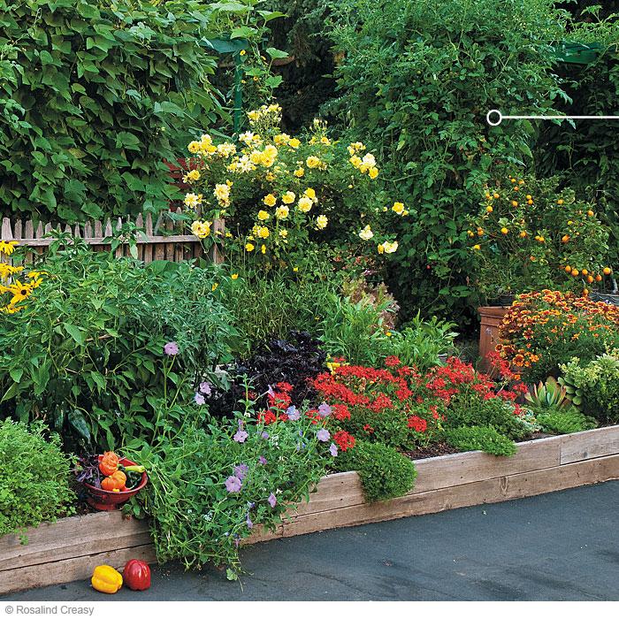 Front yard edibles  Garden Gate