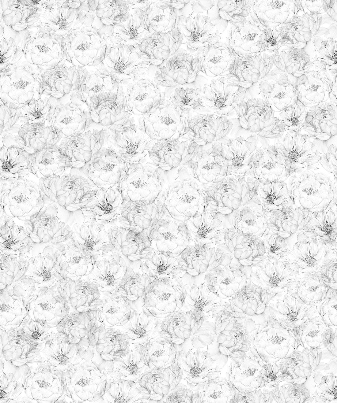 Roses & Butterflies Wallpaper, Unique Designer Wallpaper
