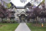 Main Photo: 208 9927 79 Avenue in Edmonton: Zone 17 Condo for sale : MLS® # E4091615