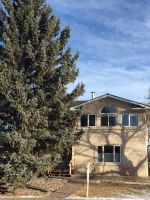 Main Photo: 7315 89 Street NW in Edmonton: Zone 17 House for sale : MLS® # E4091308