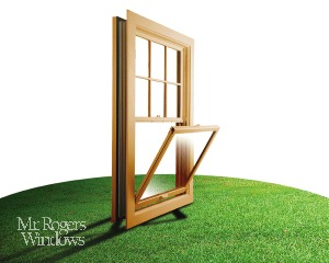 Eco Friendly Windows