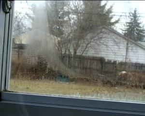 condensation window