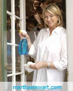 Martha Stewart Cleaning Windows