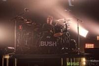 Bush007