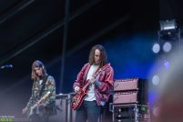 Cage-the-Elephant-15