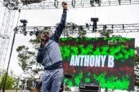 AnthonyBCaliRoots2017mjph0to8