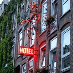 How Many Rooms Does The Ace Hotel Have