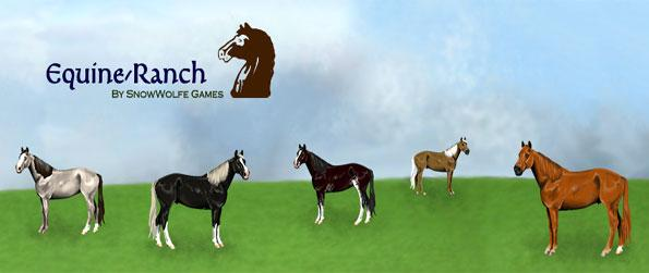realistic horse breeds # 73