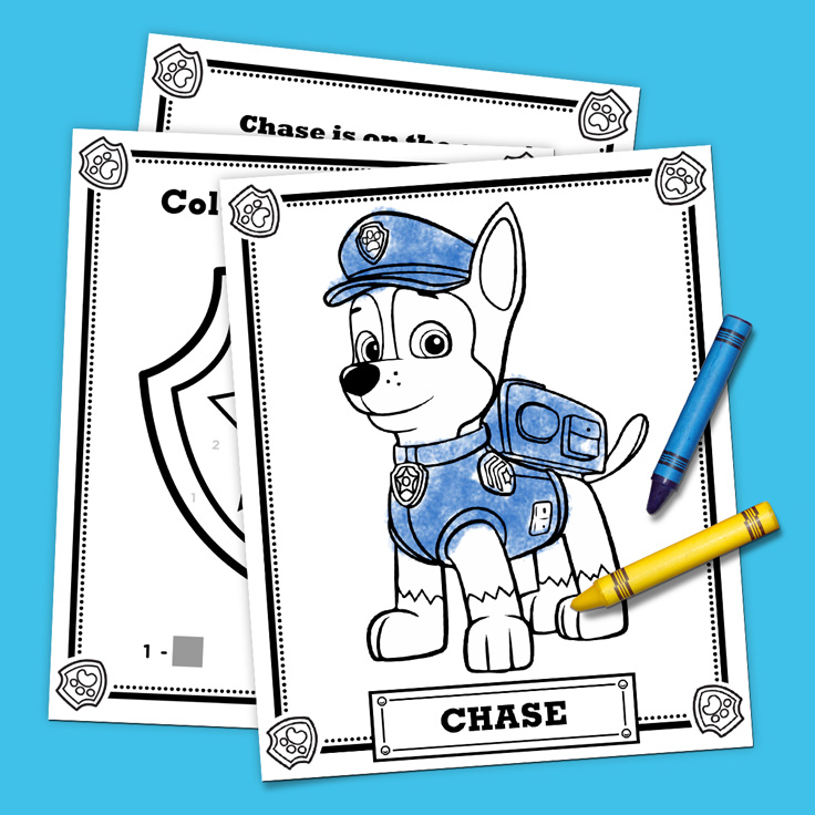 Chase Is On The Case Activity Pack Nickelodeon Parents