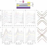 Observation of an electrically tunable band gap in