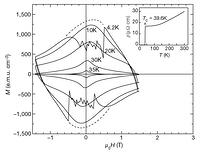 High critical currents in iron-clad superconducting MgB2