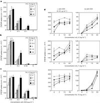 Interleukin 21 and its receptor are involved in NK cell