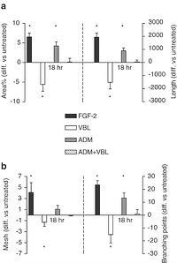 Vinblastine inhibits the angiogenic response induced by