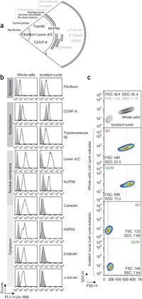 Merging high-quality biochemical fractionation with a
