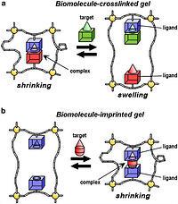 Preparation of smart soft materials using molecular complexes