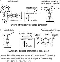 Mechanism of generation of birefringence in poly(methyl