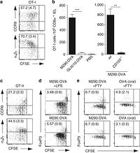 Directed antigen targeting in vivo identifies a role for