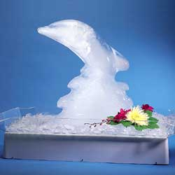disposable chair covers amazon rocking kits for sale ocean tents-ice sculpture light w/ tray