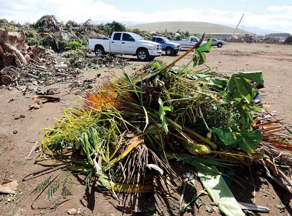 Green waste is dumped off at EKO System's drop-off at the Central Maui Landfill in this photo taken in February 2016. A proposed renewable energy project at the Wailuku-Kahului Wastewater Reclamation Facility would put the 23-year-old composting facility out of business, diverting the sewage sludge that is a necessary component in EKO's composing process. The Maui News / MATTHEW THAYER photo