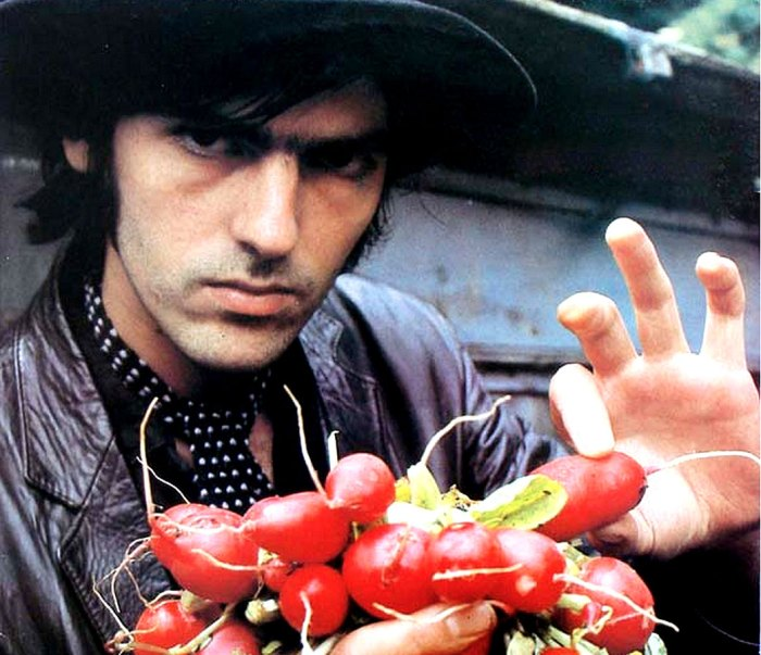 Robyn Hitchkock - in search of the perfect Salad.