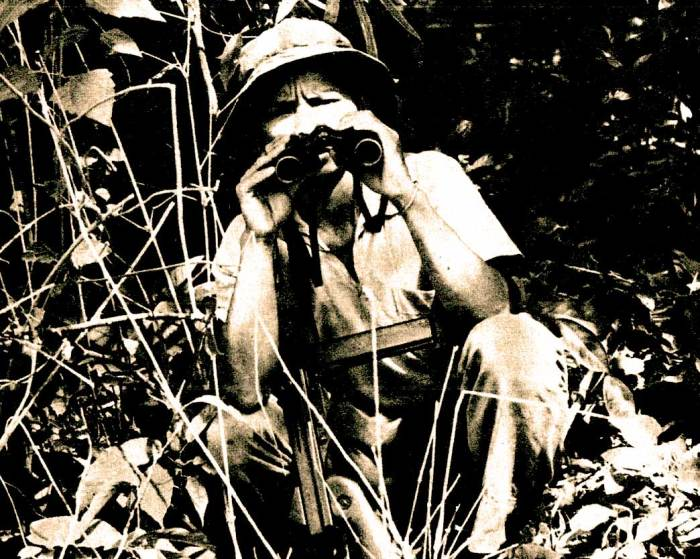 Vietcong Observer - they were just as gloomy about us.
