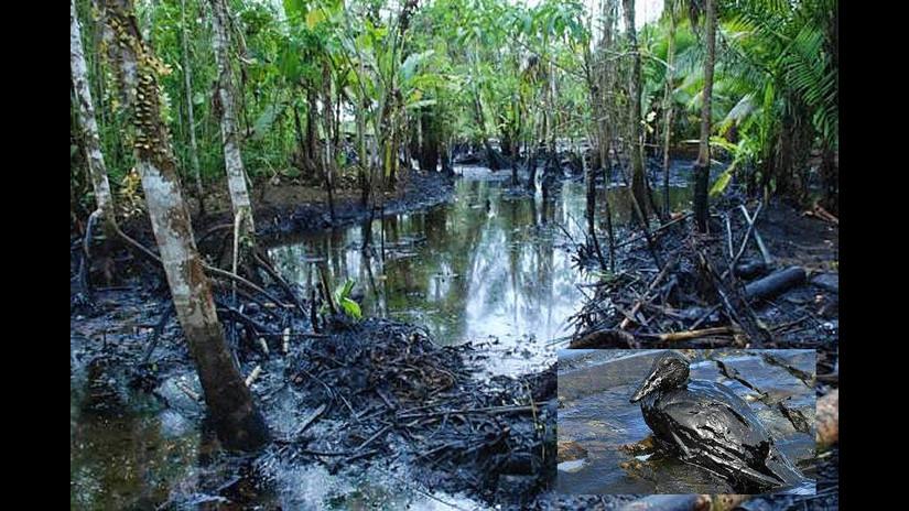 El agua de la lluvia llevó el petróleo derramado hasta el río Chiriaco y luego al Marañón.