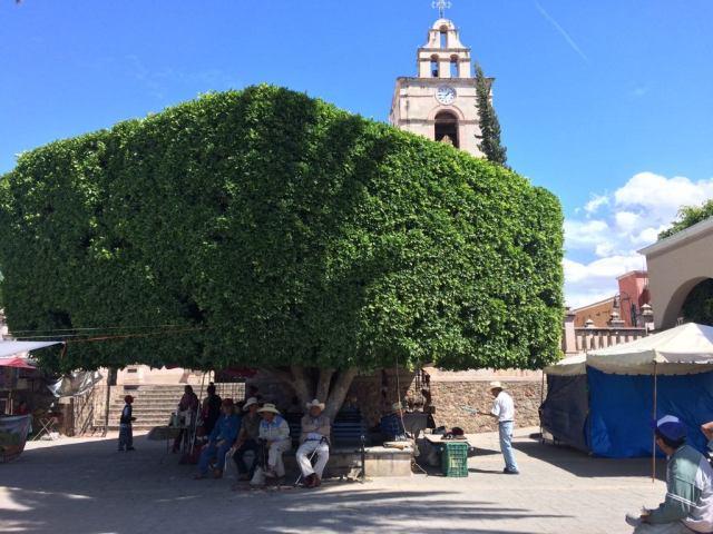 Town center in Cavillo, Mexico