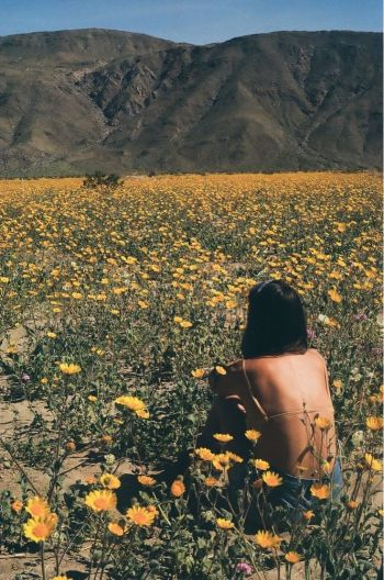 A film photograph of a woman sitting in a field of flowers