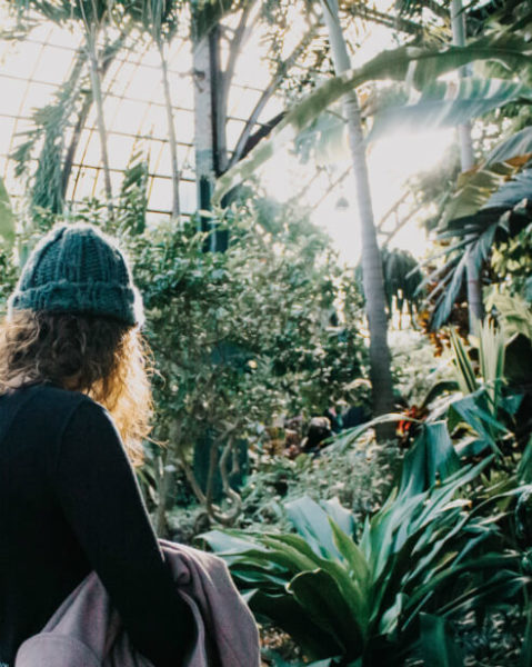 Woman looks at plants in greenhouse