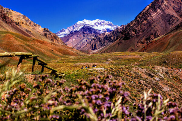 Copper fields of Mendoza, Argentina
