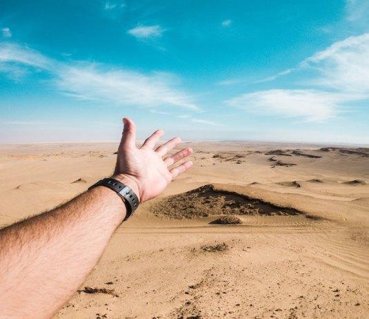 traveling to egypt nassim whba