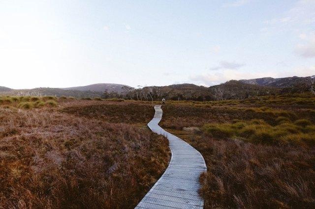 wooden path natalia safonava