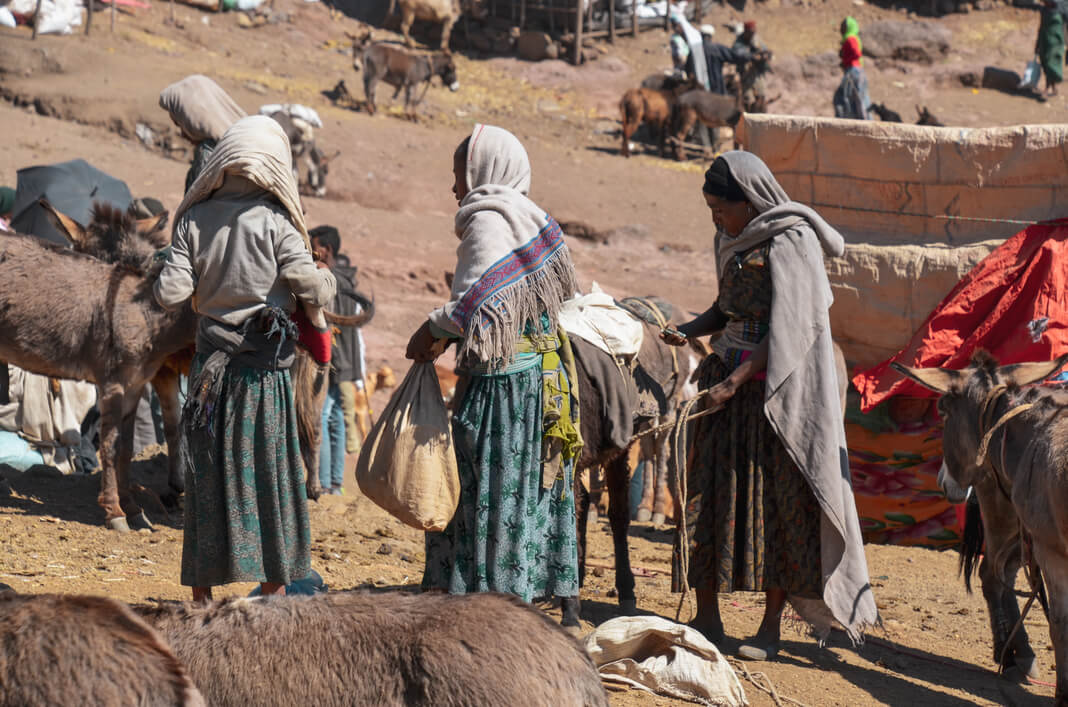 women in ethiopian food market