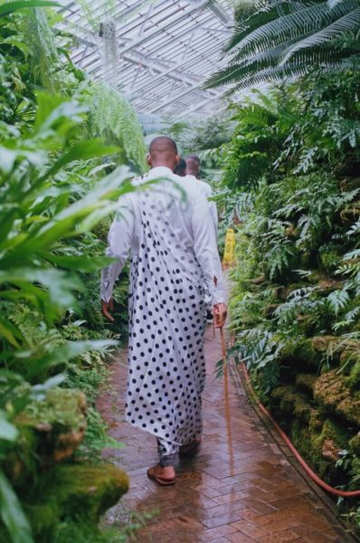 robed man walking through plants