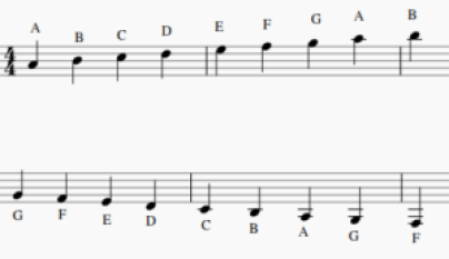 these are the different notes